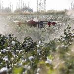 DRONI IN AGRICOLTURA: IL CORSO PER PILOTARLI