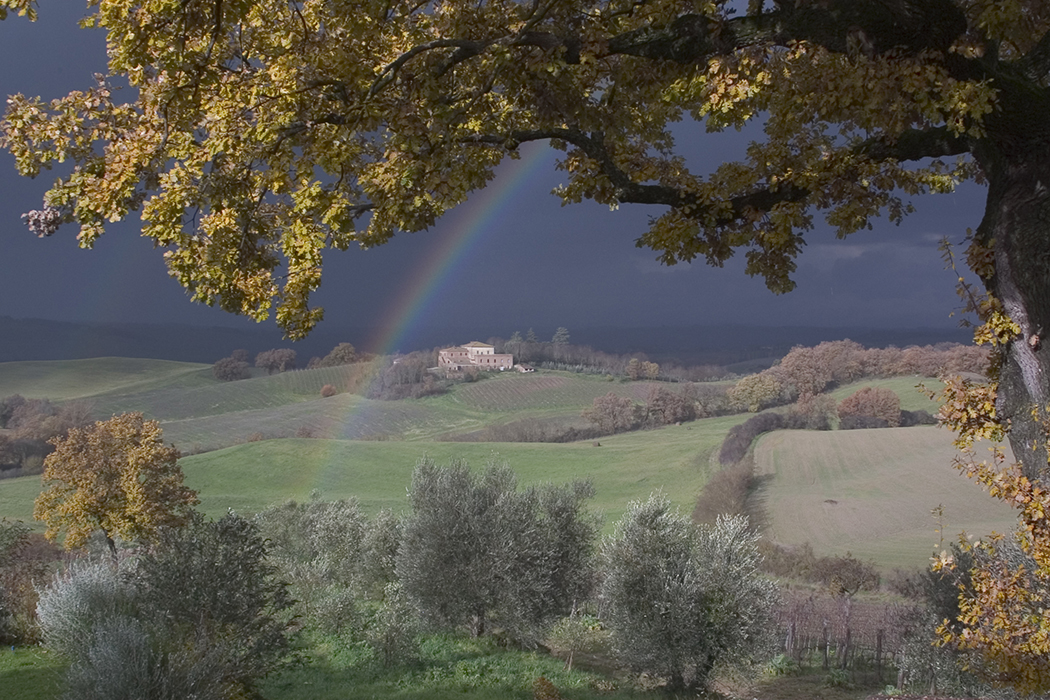 VAGHE STELLE DELL'ORCIA